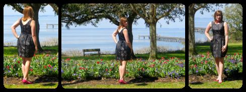 elisalex tulips